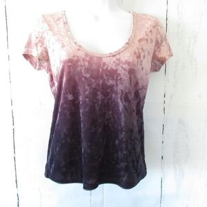 American Eagle Velvet Top Ombre Cropped
